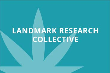 landmark-research-collective